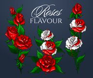Free Roses Flavour Bouquet Stock Images - 141339154