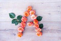 A, roses fleurissent l'alphabet sur le fond en bois gris, à plat configuration Image libre de droits