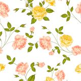 Roses, floral background, seamless pattern. Royalty Free Stock Images