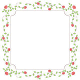 Roses floral frame Royalty Free Stock Photos