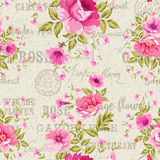 Roses, floral wallpaper Stock Photography