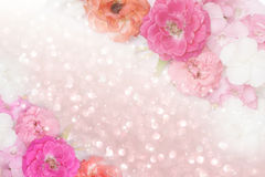 Roses flower border glitter background pastel tone. Beautiful pink,orange,white roses flower border glitter background for valentine in pastel tone royalty free stock photos