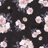 Roses flower watercolor dark seamless pattern Royalty Free Stock Images