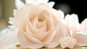 Roses flower wedding background Stock Photos