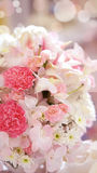 Roses flower wedding valentine background Stock Images