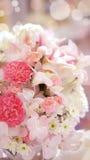 Roses flower wedding valentine background Stock Images
