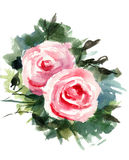 Roses flowers. Pink Roses flowers, watercolor painting Stock Photo