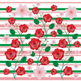Roses flowers background Royalty Free Stock Photos