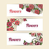 Roses and flowers design Stock Photos