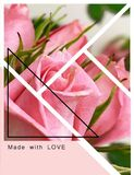 Roses flowers greetings card with love  text quotes for Valentine Day Wedding