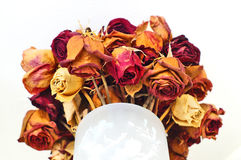 Roses forever. Everlasting love bouquet in a vase Royalty Free Stock Photo