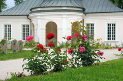 Roses in formal garden Royalty Free Stock Images