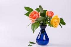 Roses fraîches de jaune et de pêche dans un vase bleu Images libres de droits