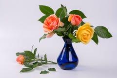 Roses fraîches de jaune et de pêche dans un vase bleu Photo stock