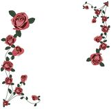 Roses frame. Illustration of frame with roses and white background Royalty Free Stock Photos