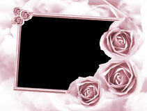 Roses frame Royalty Free Stock Images