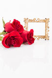 Roses and frame. Red roses and frame on white Royalty Free Stock Photo