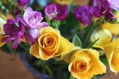 Roses and fressias Stock Images