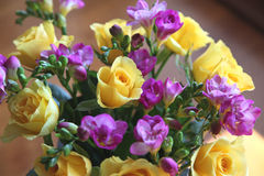 Roses and fressias Royalty Free Stock Image