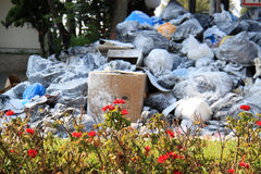 Roses and Garbage, Lebanon royalty free stock photography