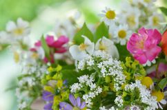 Roses and garden flowers. In arrangement Stock Photo