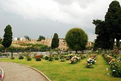 Roses in the garden of Rome city on May 31, 2014 Royalty Free Stock Photography