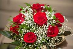 Roses gentilles Photos stock