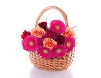 Roses and gerber Stock Photos