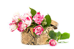 Roses in a gift box. Royalty Free Stock Images