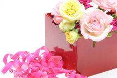 Roses in a gift box in a white background Royalty Free Stock Photos