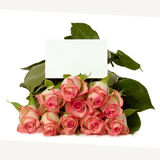 Roses with gift card Royalty Free Stock Images