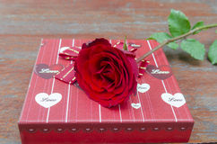 Roses and gifts on the occasion of Valentine's Day. Stock Images
