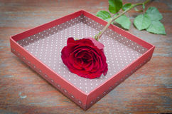 Roses and gifts on the occasion of Valentine's Day. Stock Photography
