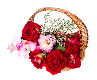 Roses and gladiolus are in a wicker basket. Roses and beautiful gladiolus are in a wicker basket on white background Royalty Free Stock Image