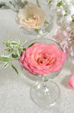 Roses in the glass. Pink roses in the glass Royalty Free Stock Images