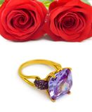 Roses and golden ring Royalty Free Stock Image