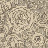 Roses graphic Stock Photo