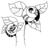 Roses graphiques Photo libre de droits