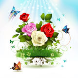 Roses on grass. With butterflies Stock Photography