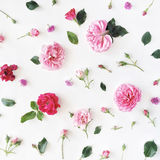 Roses and green leaves on white background Stock Images