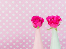 Roses in green and pink vase Royalty Free Stock Photography