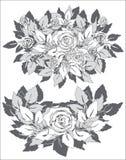 Roses grises Image libre de droits