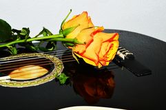 Roses and guitar strings, symbols. Roses on the strings of a guitar, evoking emotion and love feelings Stock Image