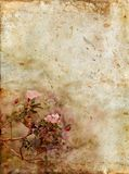 Roses on a Gunge Background Royalty Free Stock Images