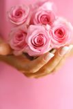 Roses in hands Royalty Free Stock Photo