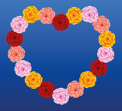 Roses Heart Colors Royalty Free Stock Photo