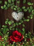 Roses and a heart with key on wooden board Royalty Free Stock Images