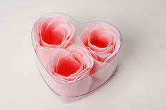 Roses in a heart shape box present. In white background Royalty Free Stock Photos