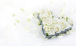 Roses in a heart shaped metal tray Stock Photo