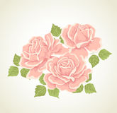 Roses. Illustration with flowers bouquet. Royalty Free Stock Photos